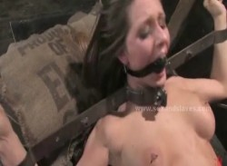Sexy brunette clothes are ripped before she is bound and fucked in all her holes in slavery