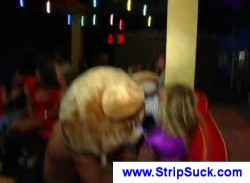 Party chicks having fun with a lucky stripper